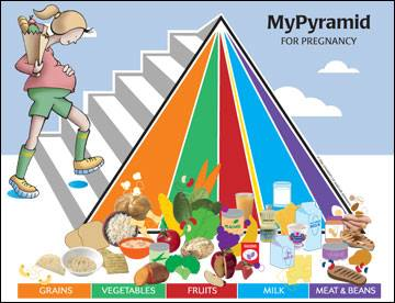My Pyramid For Pregnancy
